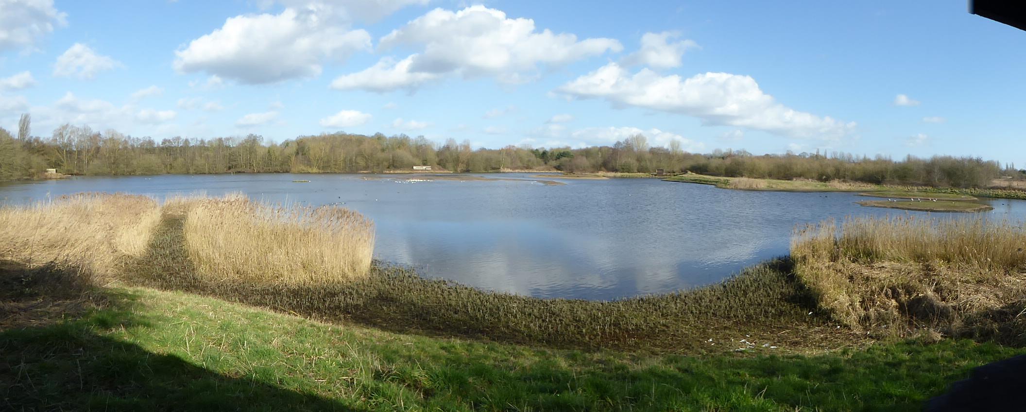 East Marsh Pool Brandon Marsh